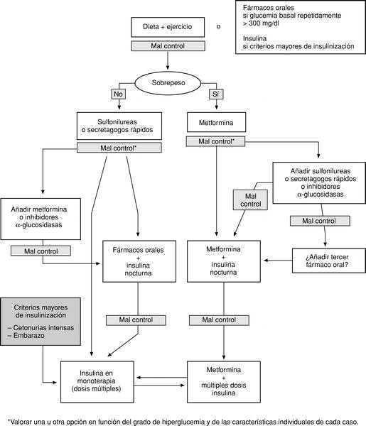 diabetes tipo 2 manejo pdf
