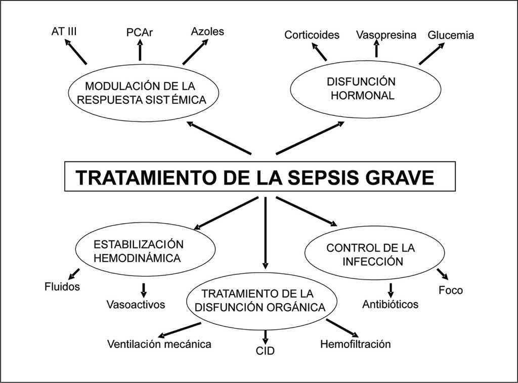 Shock Septico Medicina Intensiva