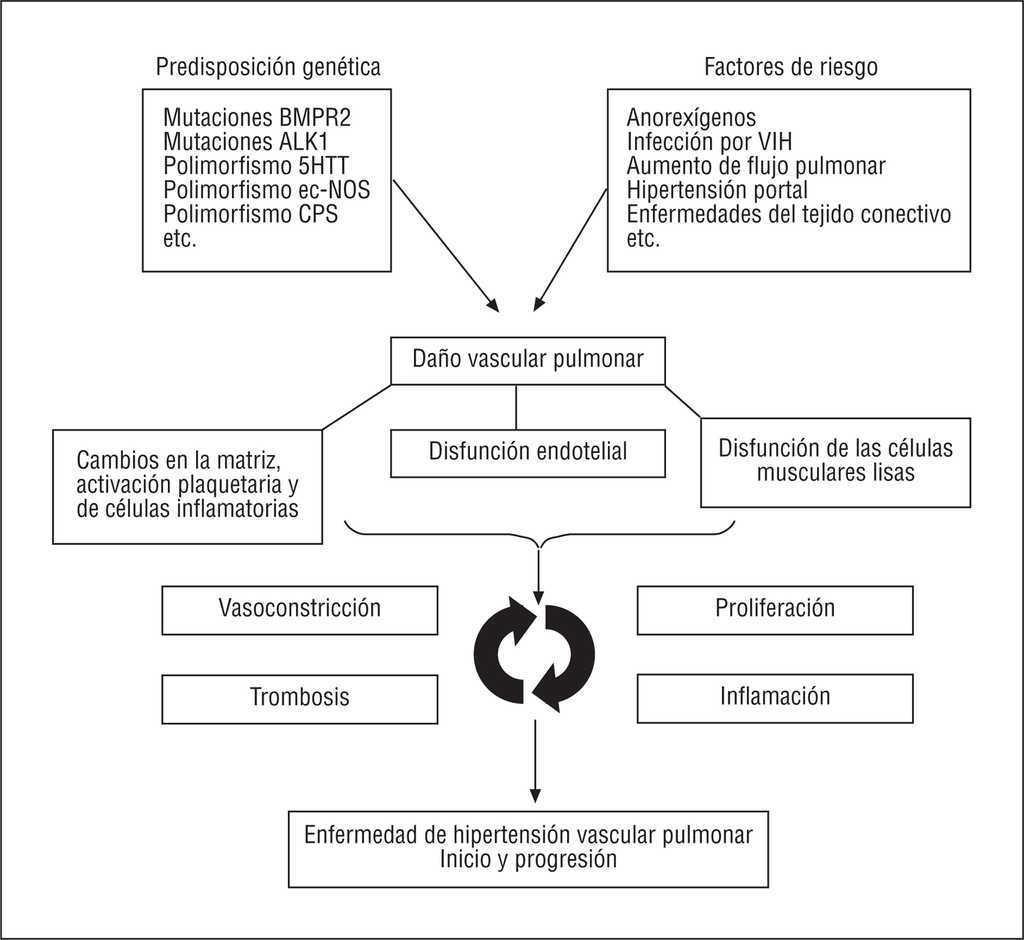 Tratamiento de pautas de hipertensión pulmonar