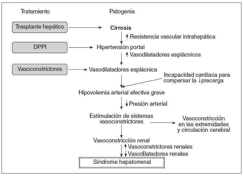 síntomas de hepatitis alcohólica