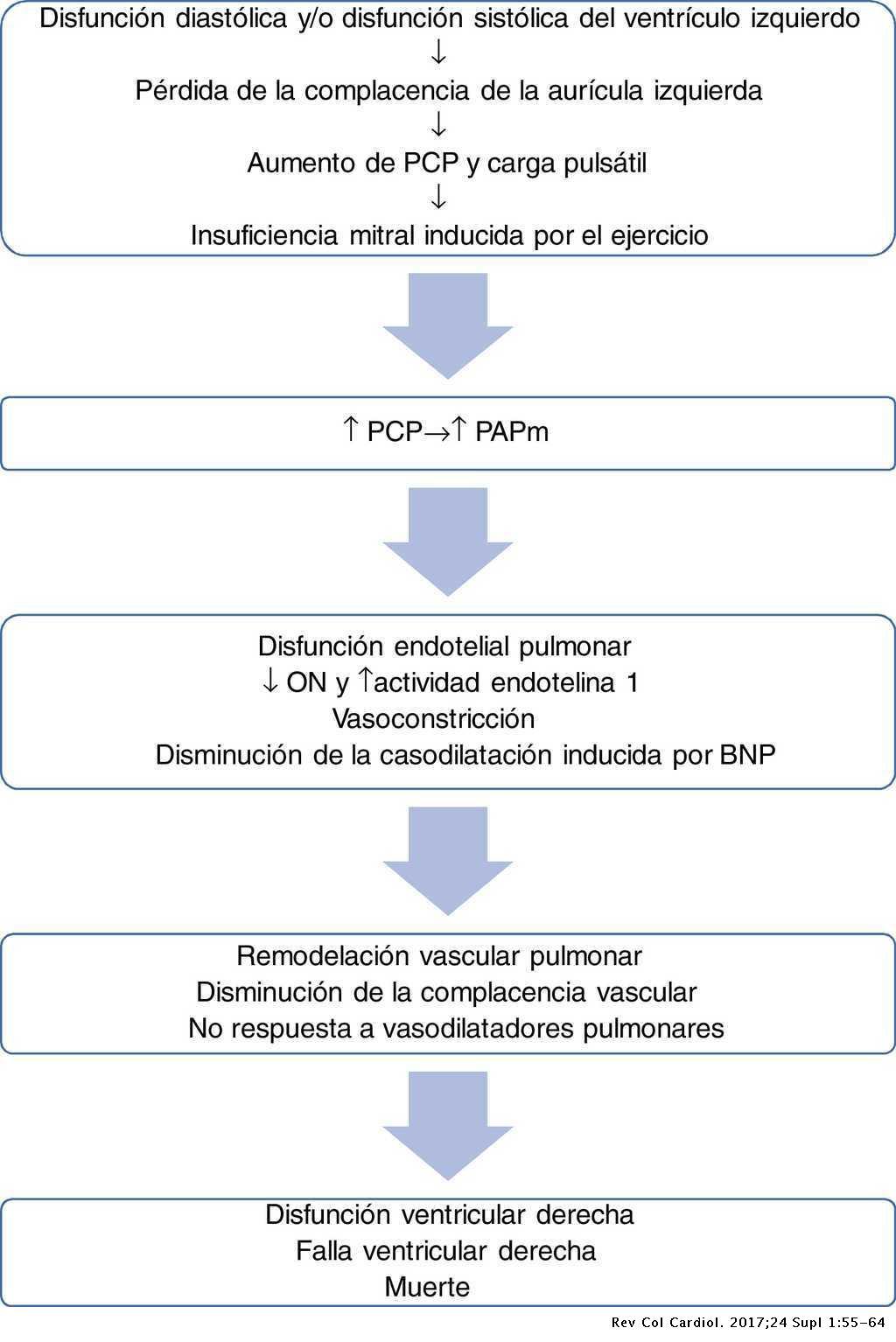 Hipertensión pulmonar asociada a enfermedad cardiaca..