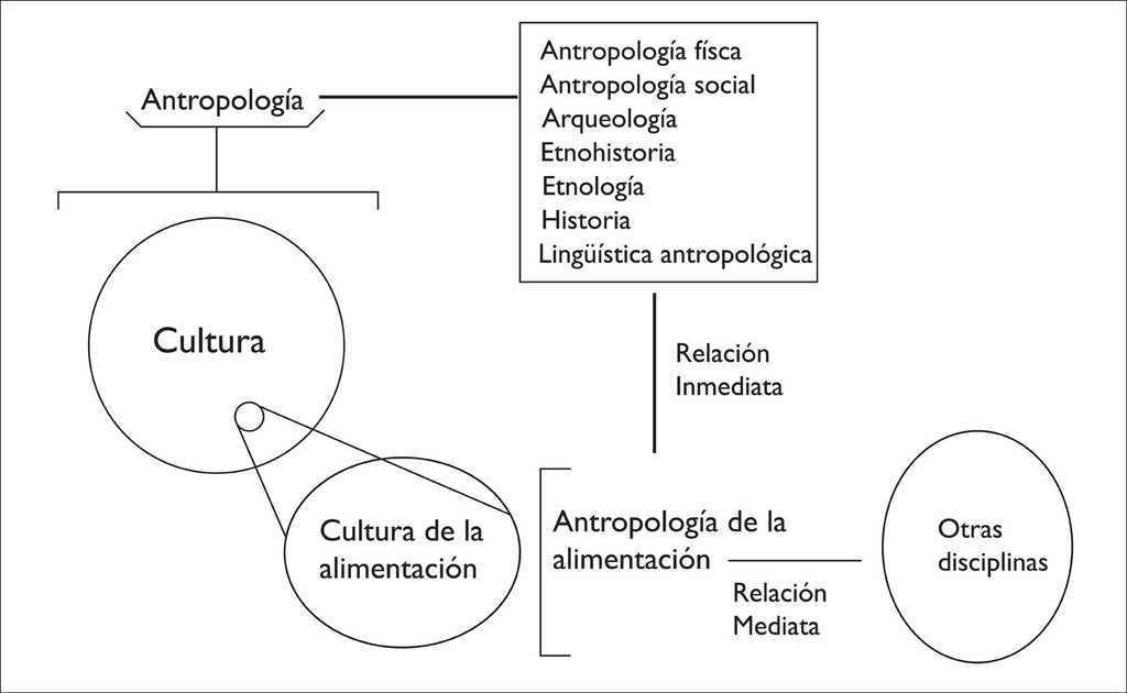 Cultura y alimentación. aspectos fundamentales para una visión ...