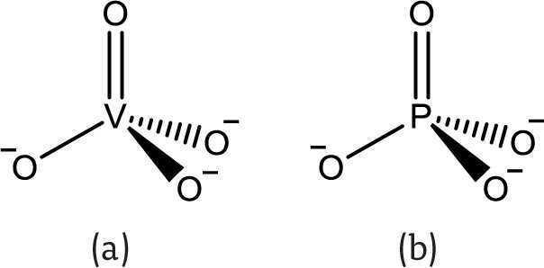 semejanzas estructural y electrnica entre los aniones vanadato a y