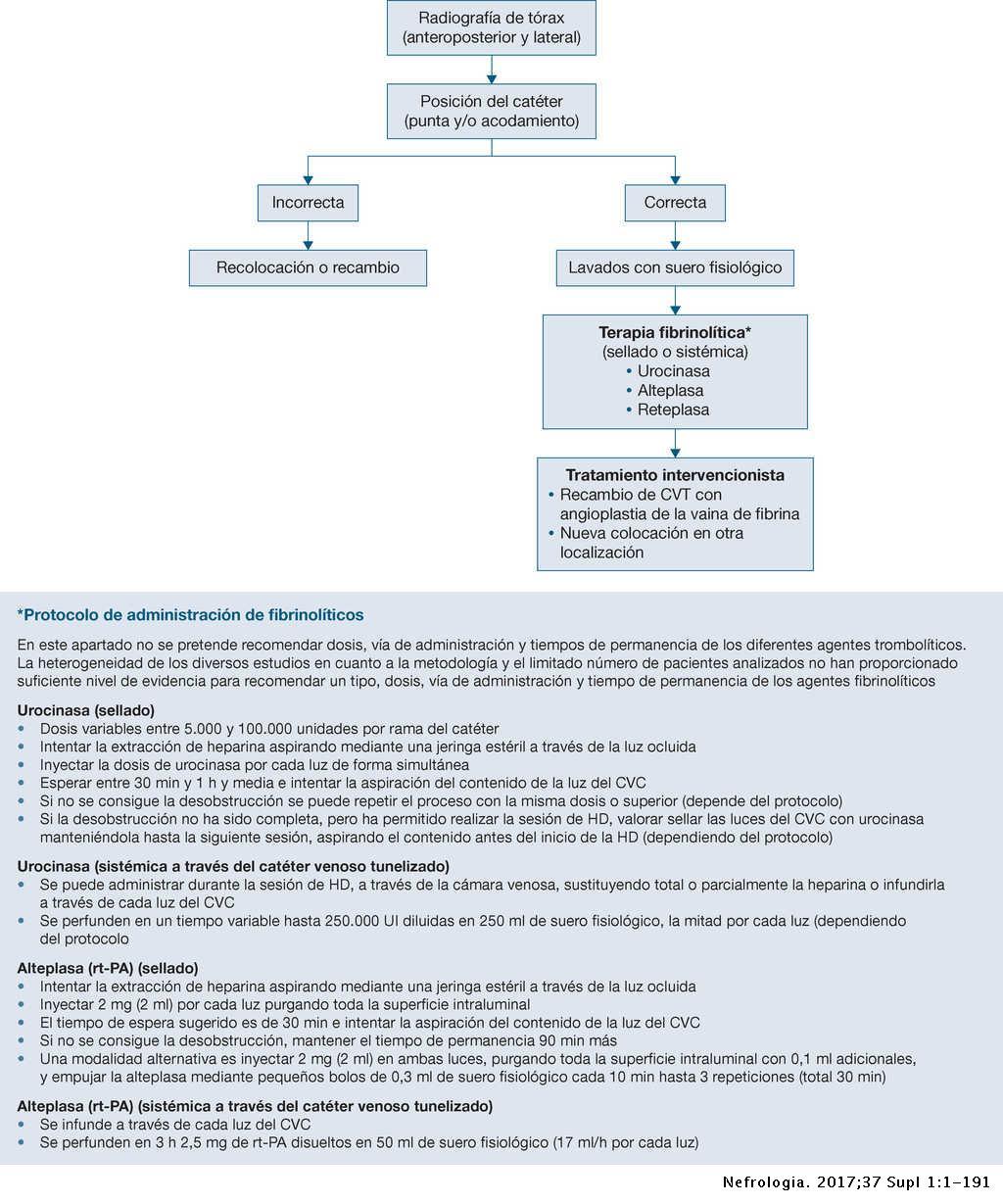 Gu A Cl Nica Espa Ola Del Acceso Vascular Para Hemodi Lisis