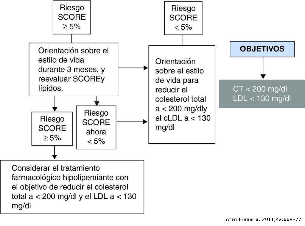 e265ff7e1 Factores de riesgo cardiovascular y atención primaria: evaluación e ...