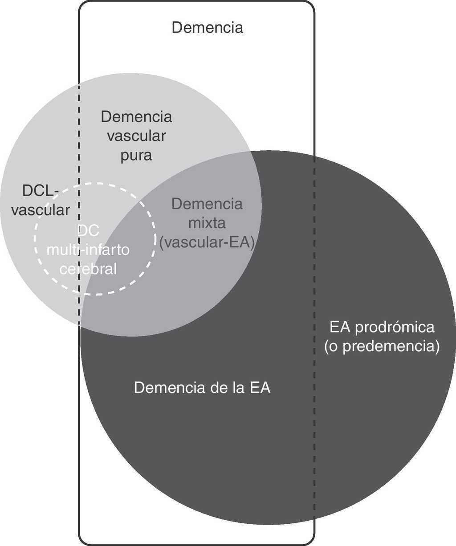 Circuito Vascular : Diagnóstico del deterioro cognitivo vascular y sus principales
