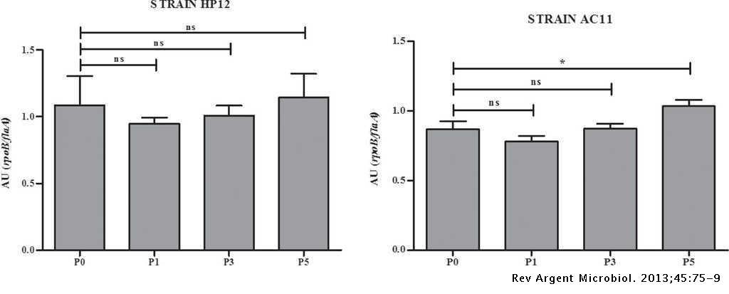 Enhancing adherence of Arcobacter butzleri after serial