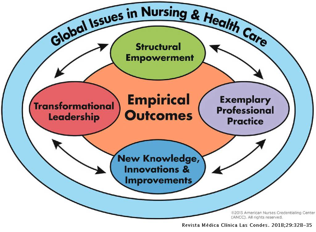 ORGANIZATIONAL CULTURE AND NURSING PRACTICE: THE MAGNET