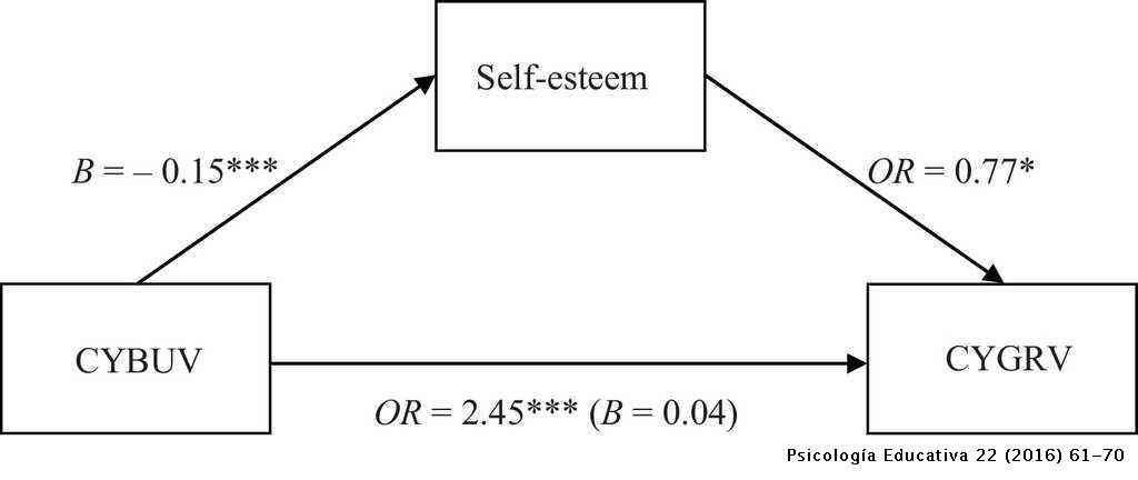 A cross-national study of direct and indirect effects of