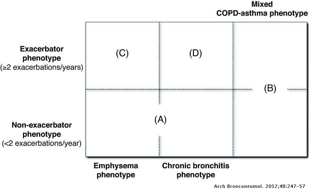 Spanish COPD Guidelines (GesEPOC): Pharmacological Treatment