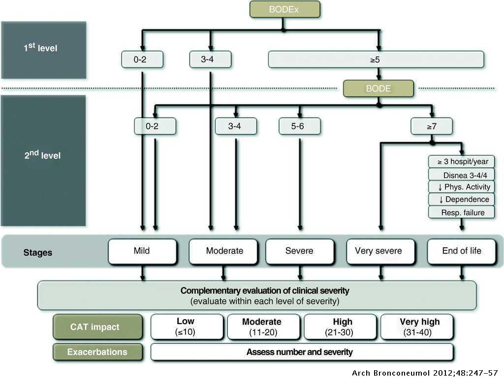 Spanish COPD Guidelines (GesEPOC): Pharmacological Treatment of