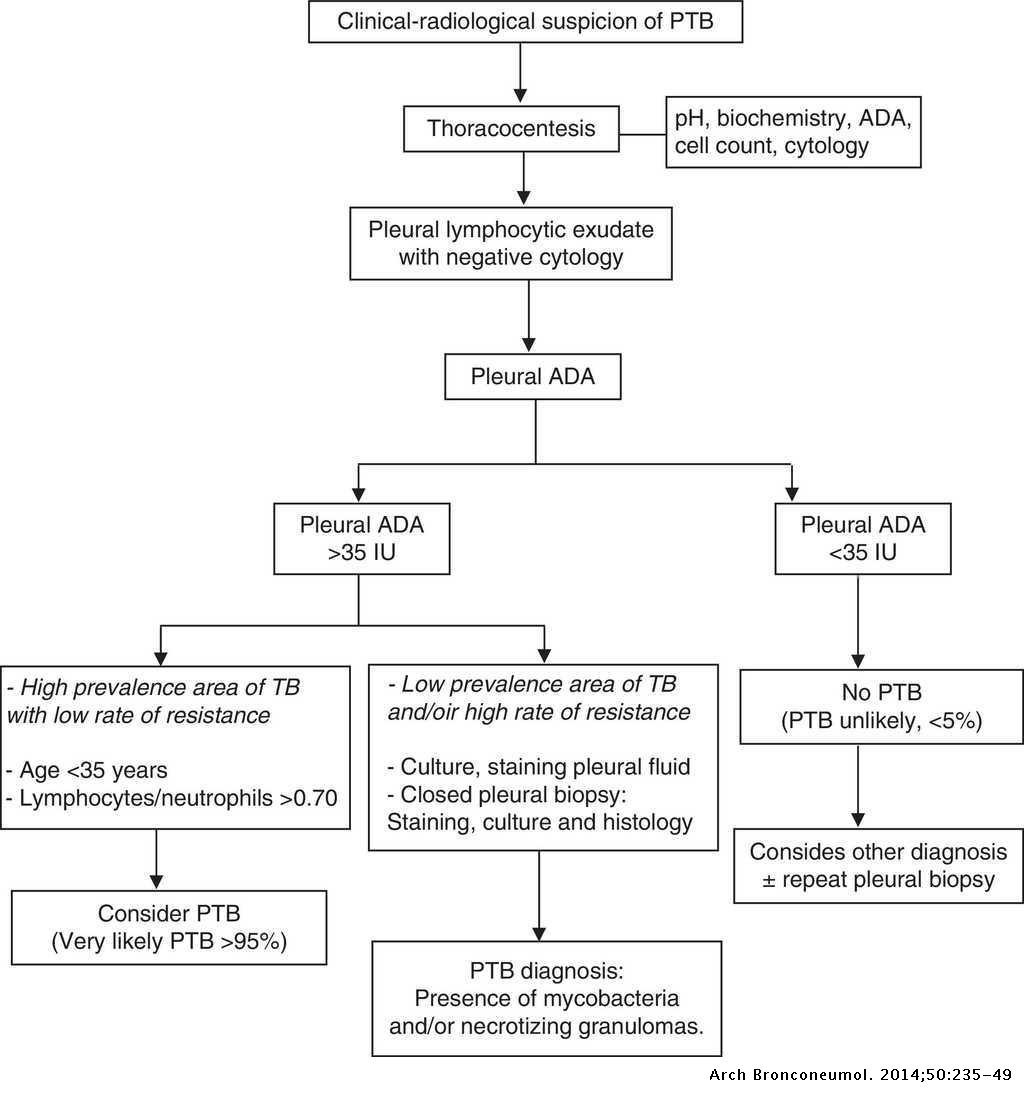 Recommendations of Diagnosis and Treatment of Pleural