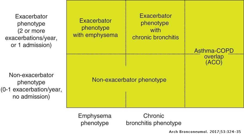 Spanish COPD Guidelines (GesEPOC) 2017  Pharmacological Treatment of