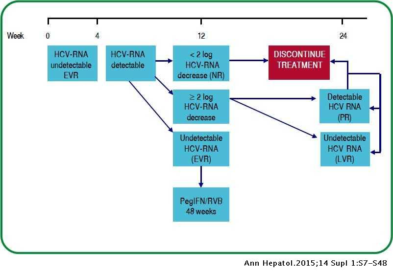 Mexican Consensus on the Diagnosis and Management of Hepatitis C