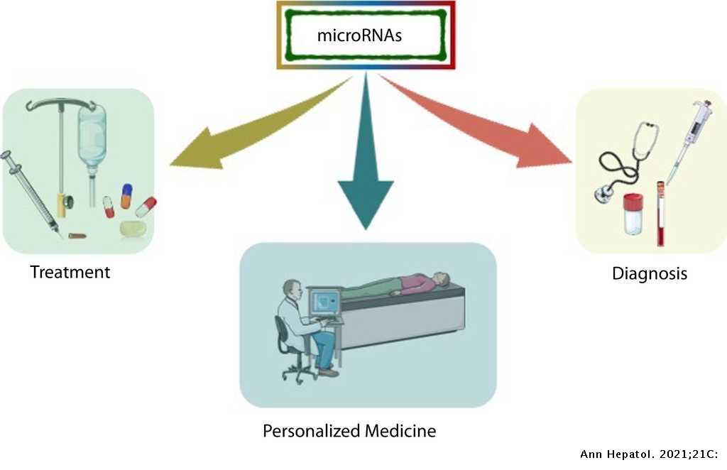 microRNAs