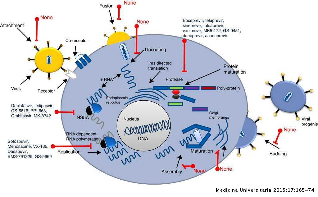 History and progress of antiviral drugs: From acyclovir to