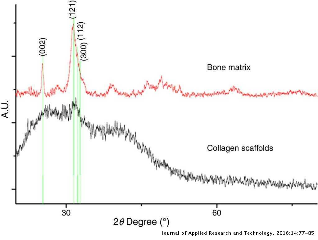 Physico-chemical characterization of collagen scaffolds for tissue