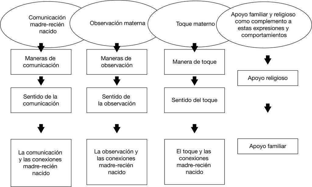 Expresiones y comportamientos de apego madre-recién nacido ...