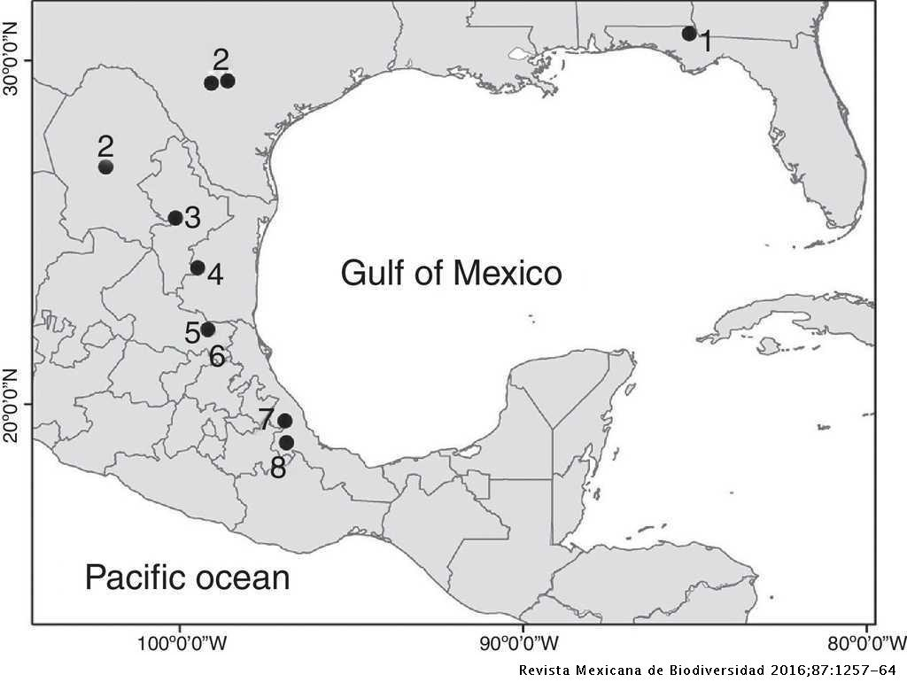 697336ad231d Distribution of the species of Mexistenasellus in Mexico and the United  States  (1). Figure 1.