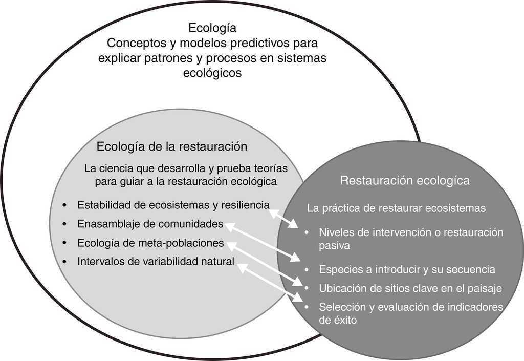 Ecología de la restauración en México: estado actual y perspectivas ...