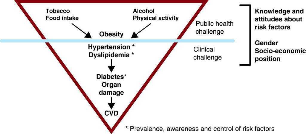 Academia de diabetes electrónica