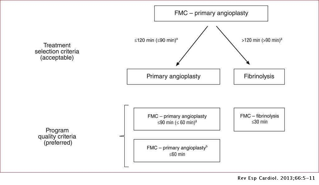 Comments on the ESC Guidelines for the Management of Acute