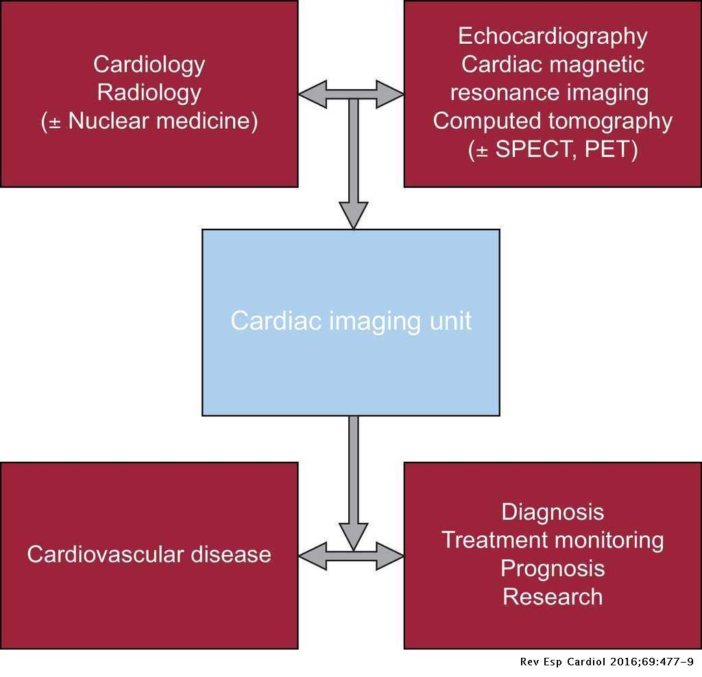 Integrating Multimodal Imaging in Clinical Practice: The