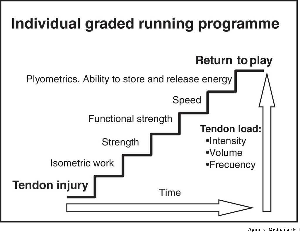 Load management in tendinopathy: Clinical progression for