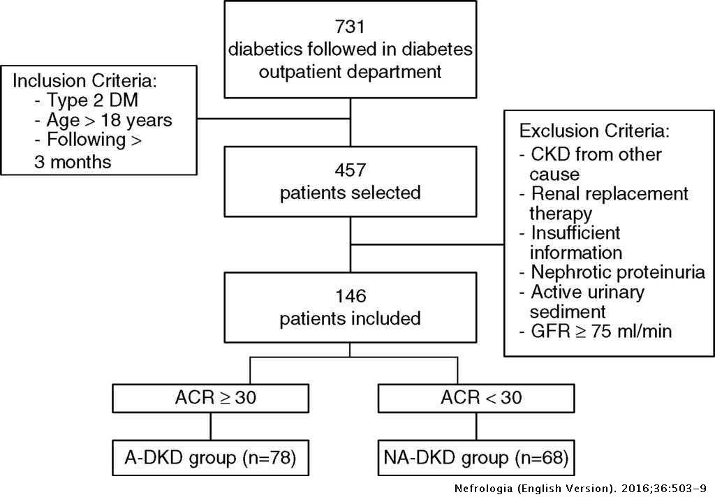 Diabetic kidney disease: Is there a non-albuminuric phenotype in
