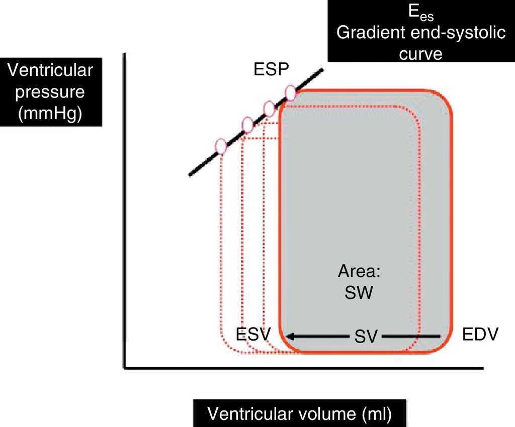 Evaluation Of Contractility And Postloading In The Intensive Care How Ejector Pumps Work Addition Push Button Switch Wiring Moreover Ventricular Pressurevolume Loop During A Cardiac Cycle Sv Is Difference Between End