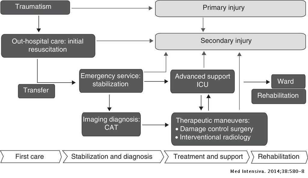 Epidemiology Of Severe Trauma Medicina Intensiva English