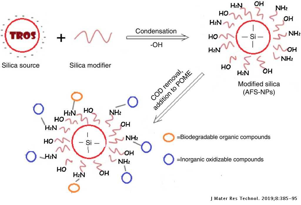 Development of amino-functionalized silica nanoparticles for