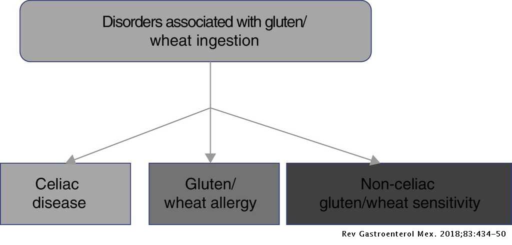 Clinical guidelines on the diagnosis and treatment of celiac