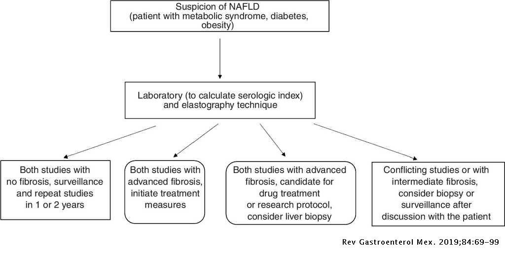 The Mexican consensus on nonalcoholic fatty liver disease