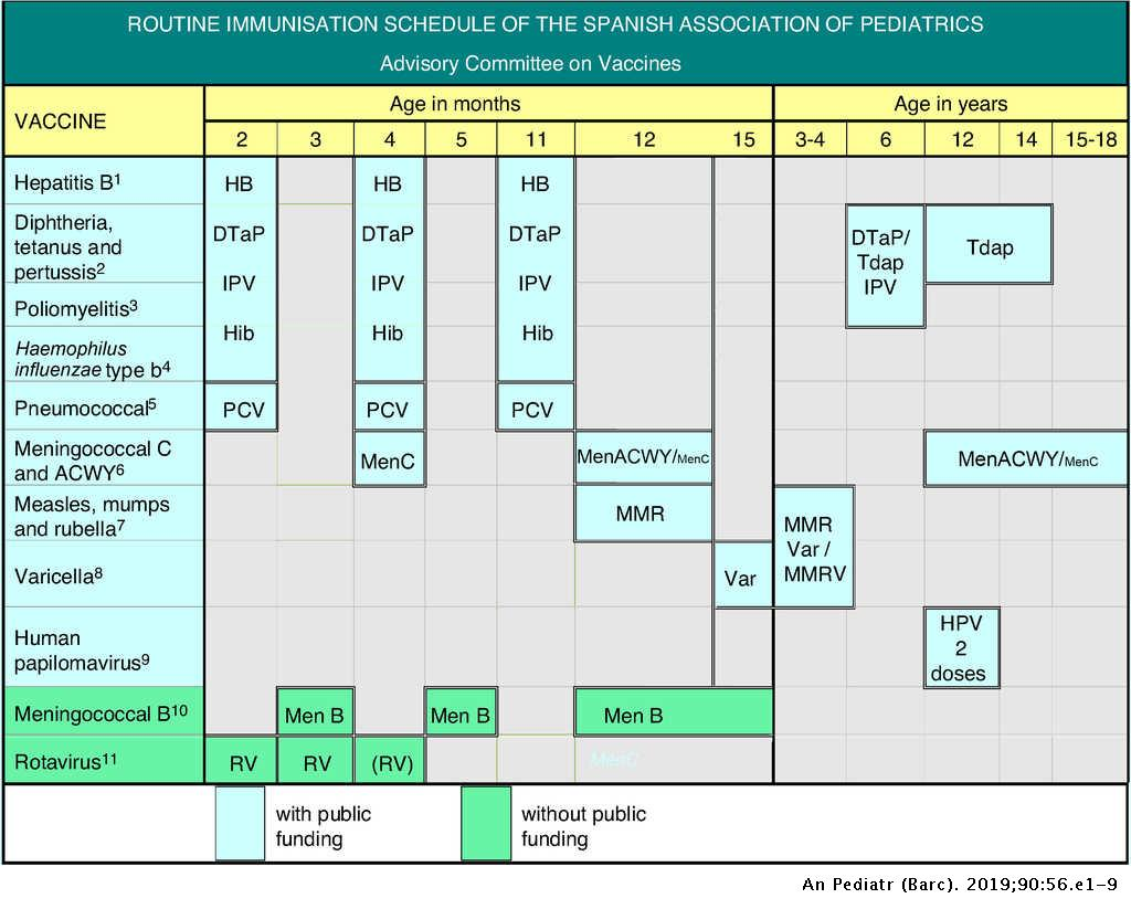 Calendrier Des Vaccinations Et Recommandations Vaccinales 2019.Immunisation Schedule Of The Spanish Association Of