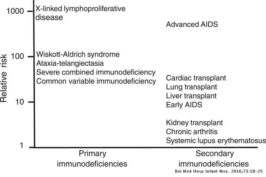 Primary immunodeficiencies and B-cell lymphomas   Boletín