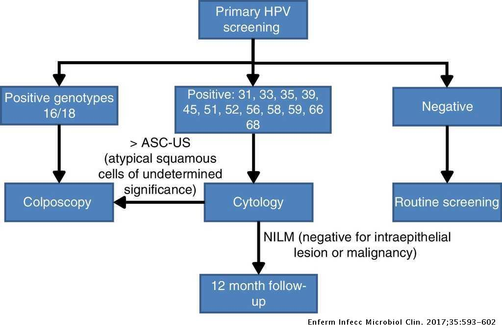 hpv virus and colposcopy)