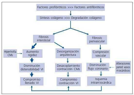 Prevención de enfermedades cardíacas hipertensivas