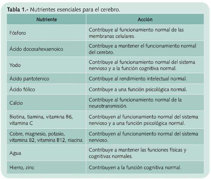 Alimentación Y Neuronas Farmacia Profesional