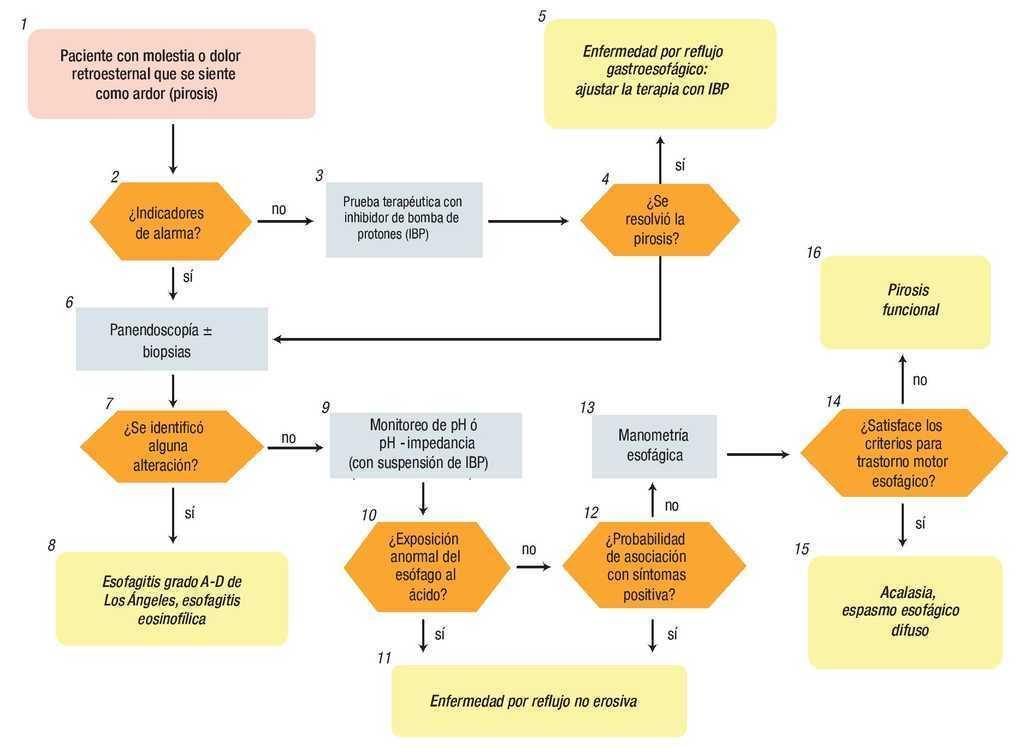 algoritmo de tratamiento de la dispepsia diabetes