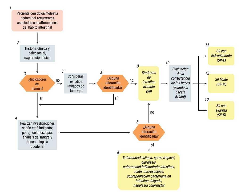 Algoritmos de la Fundación de Roma para Diagnóstico de Síntomas ...