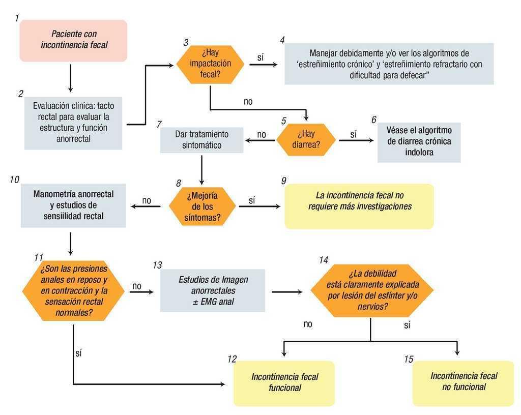 manometría antroduodenal, gastroparesia y diabetes