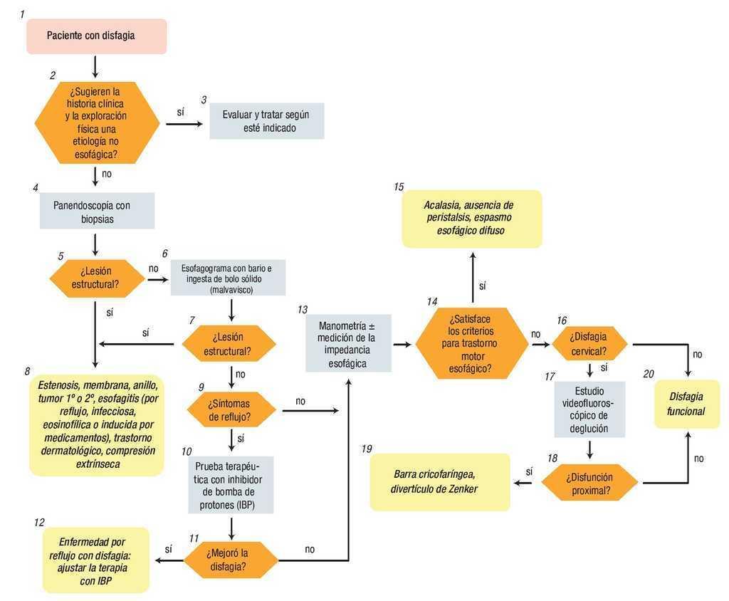 acalasia esofagica tratamiento farmacologico de diabetes