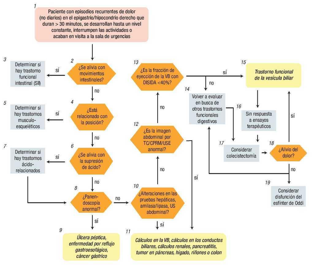 cálculo crónico colecistitis diagrama de fisiopatología de la diabetes