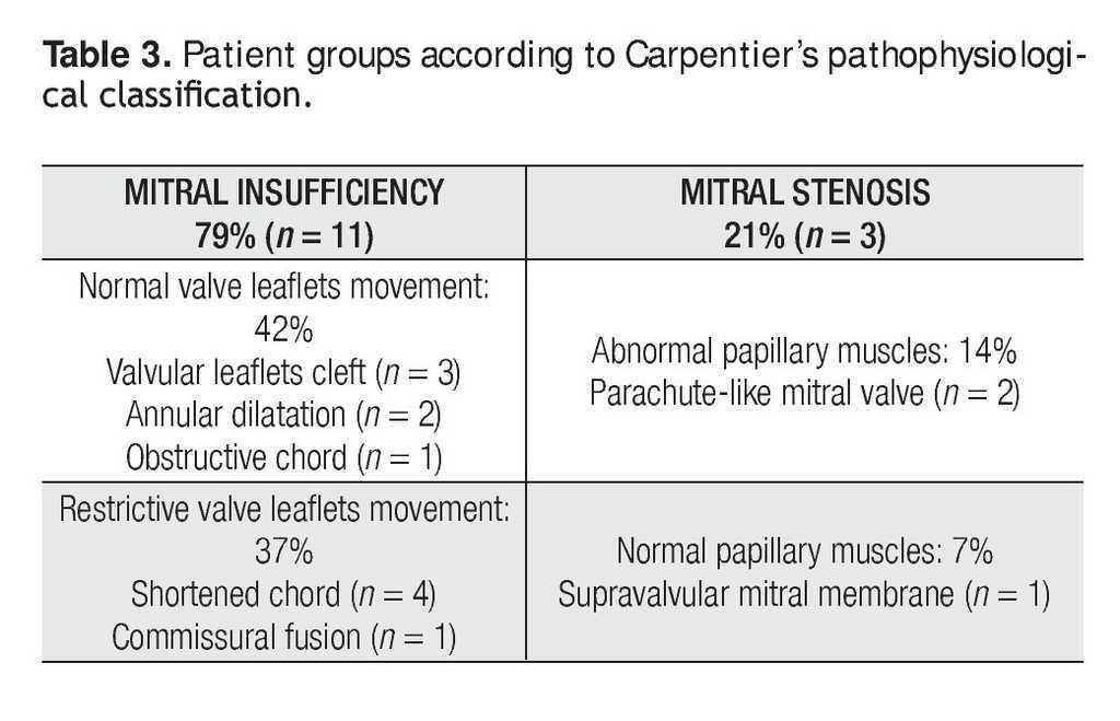 Surgical Repair Of Congenital Mitral Valve Malformations Archivos