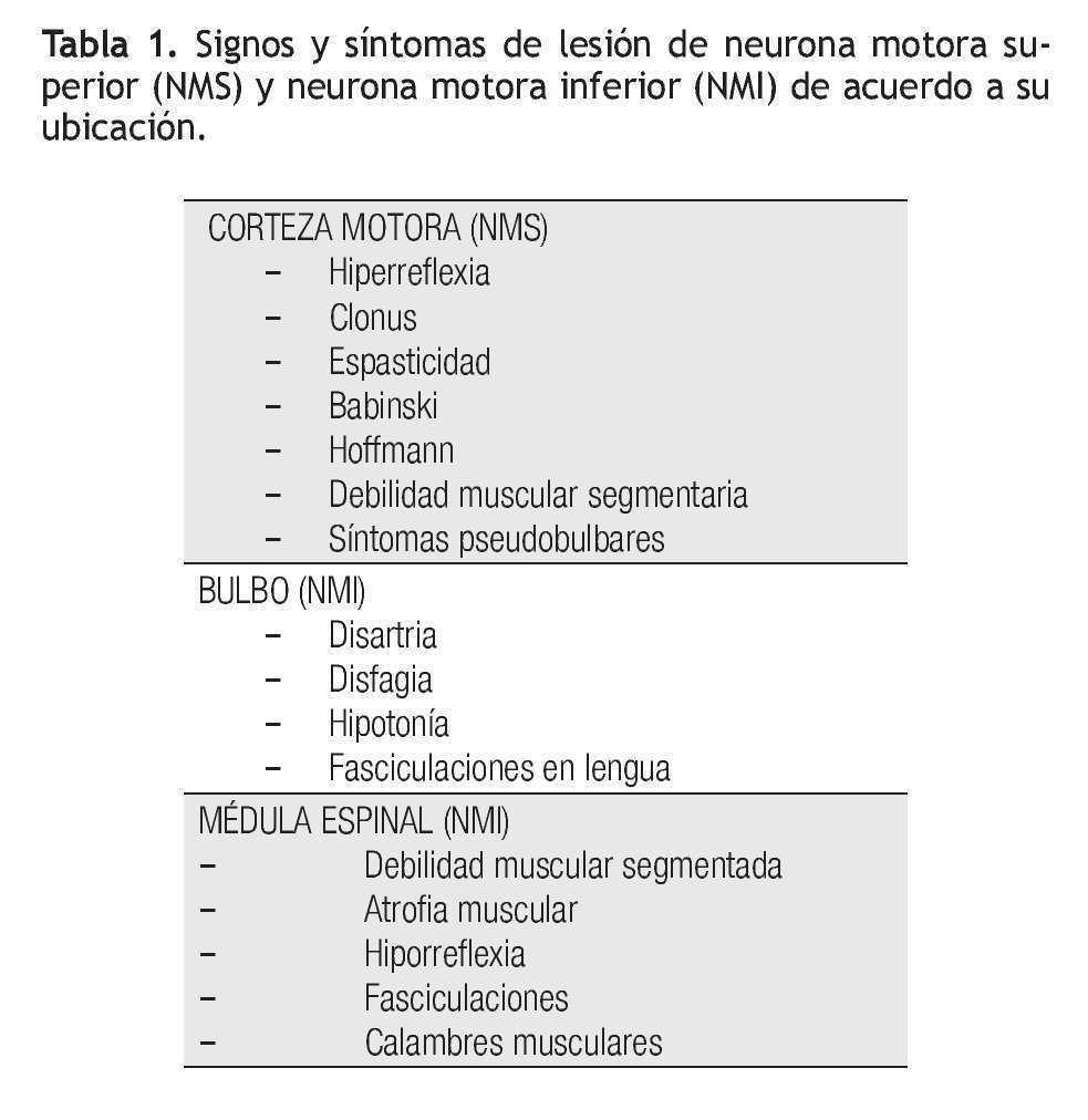 signos neurona motora superior
