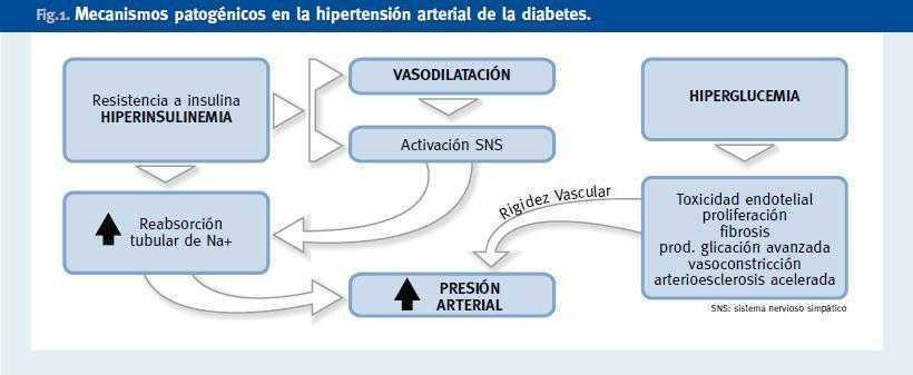 diabetes de nueva aparición durante la terapia antihipertensiva