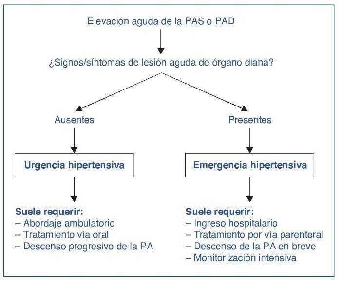 Daño de órganos de emergencia hipertensivo