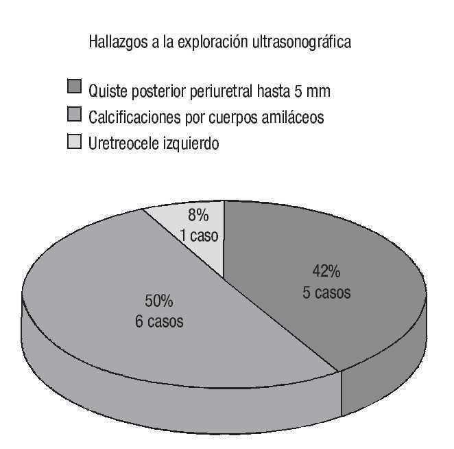 tamaño normal de la próstata cc 21
