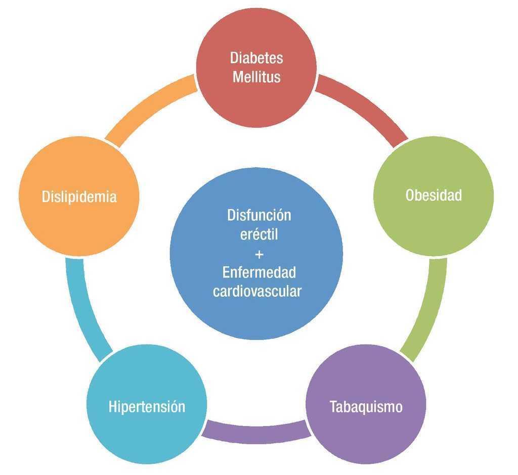 mecanismo de disfunción eréctil de diabetes